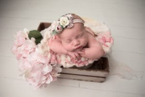 Columbus Newborn Photographer