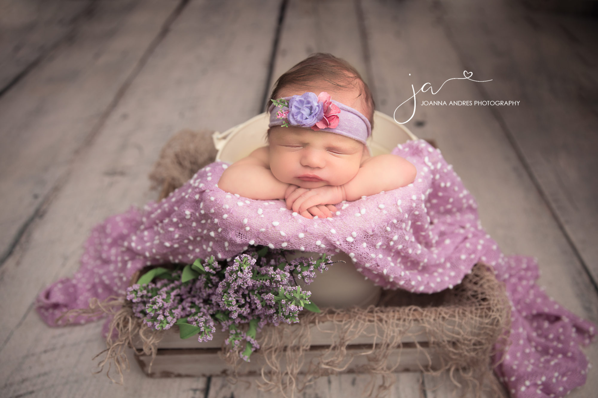 Best Baby Photographer Clintonville Ohio